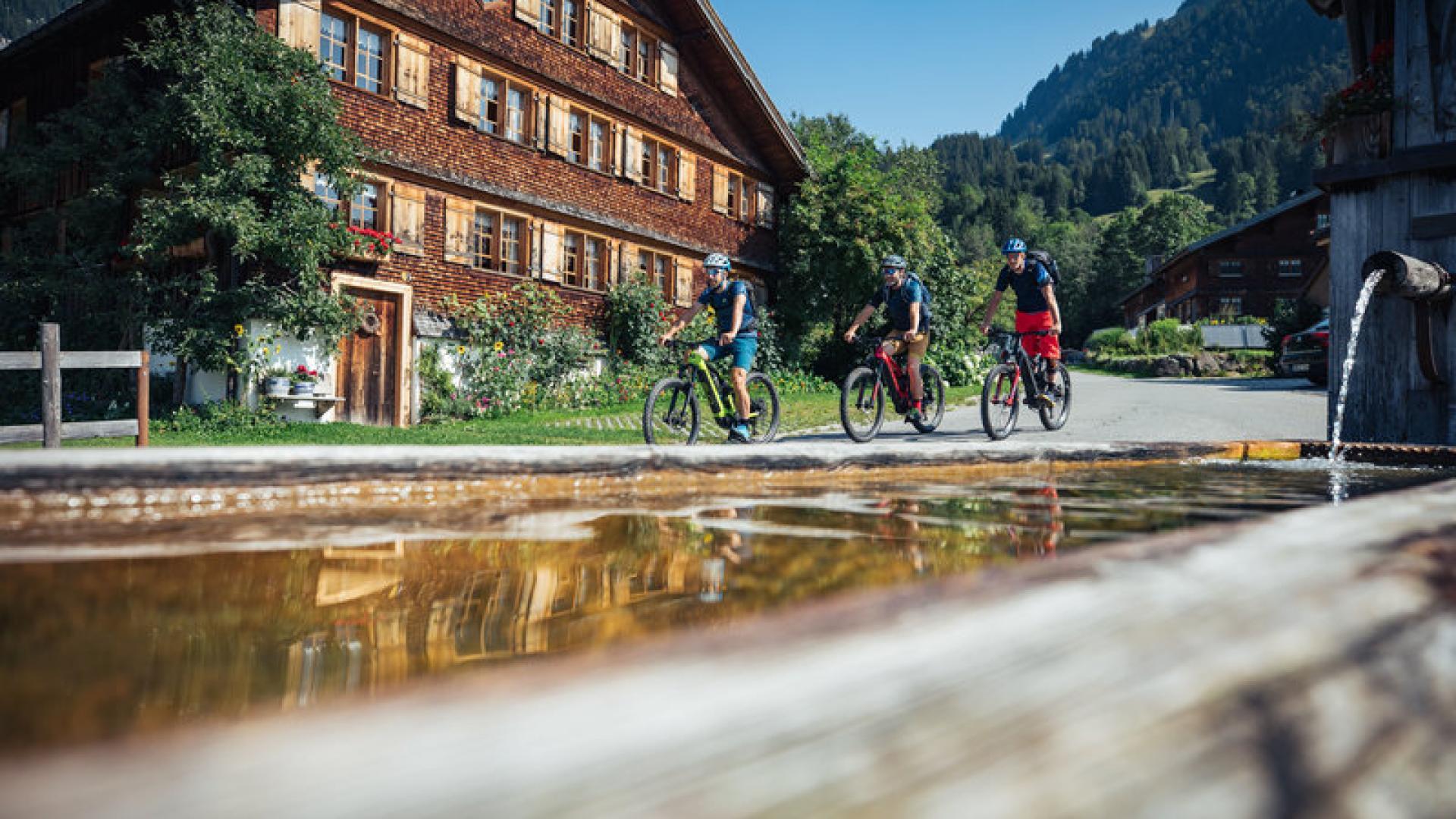 Singletrails bregenzerwald